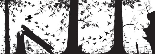 A silhouette mural of a forest with trees, birds, vegetation, and a fence.