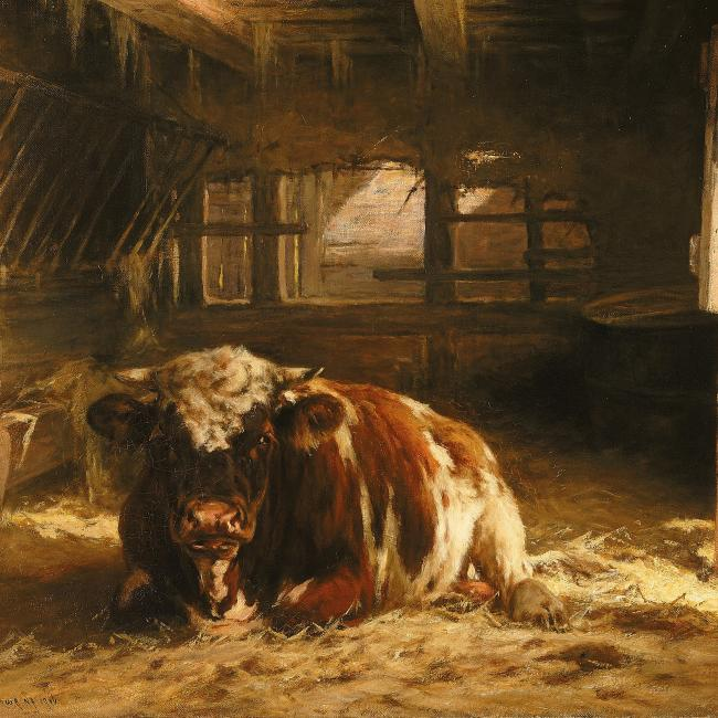 A painting of a cow laying down inside a farm house.