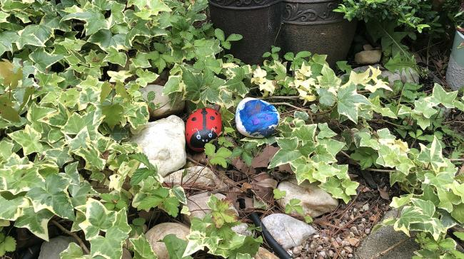 An image of painted stones in a garden