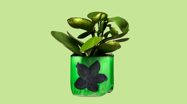 a plant potted in a milk carton