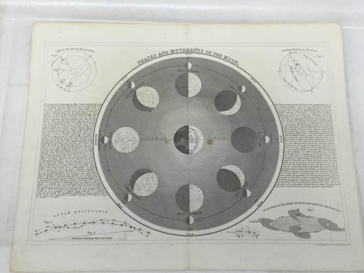 Phases and Movements of the Moon from the Joseph Cornell Study Center