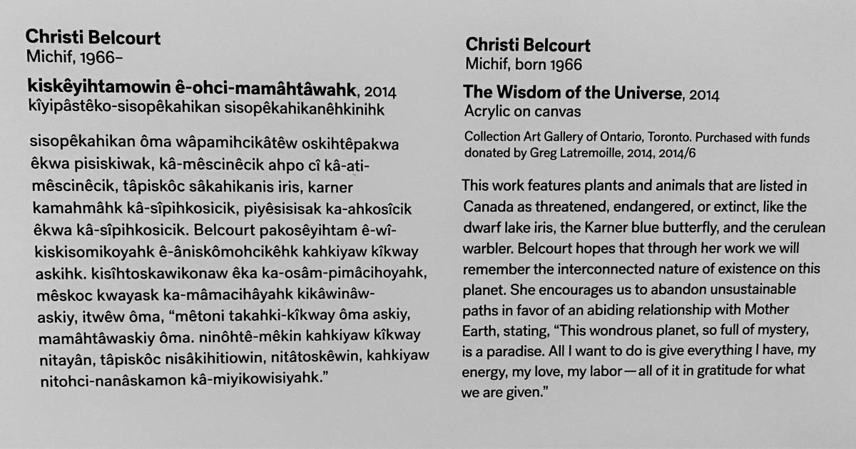 Wall text label for Christi Belcourt's artwork  The Wisdom of the Universe