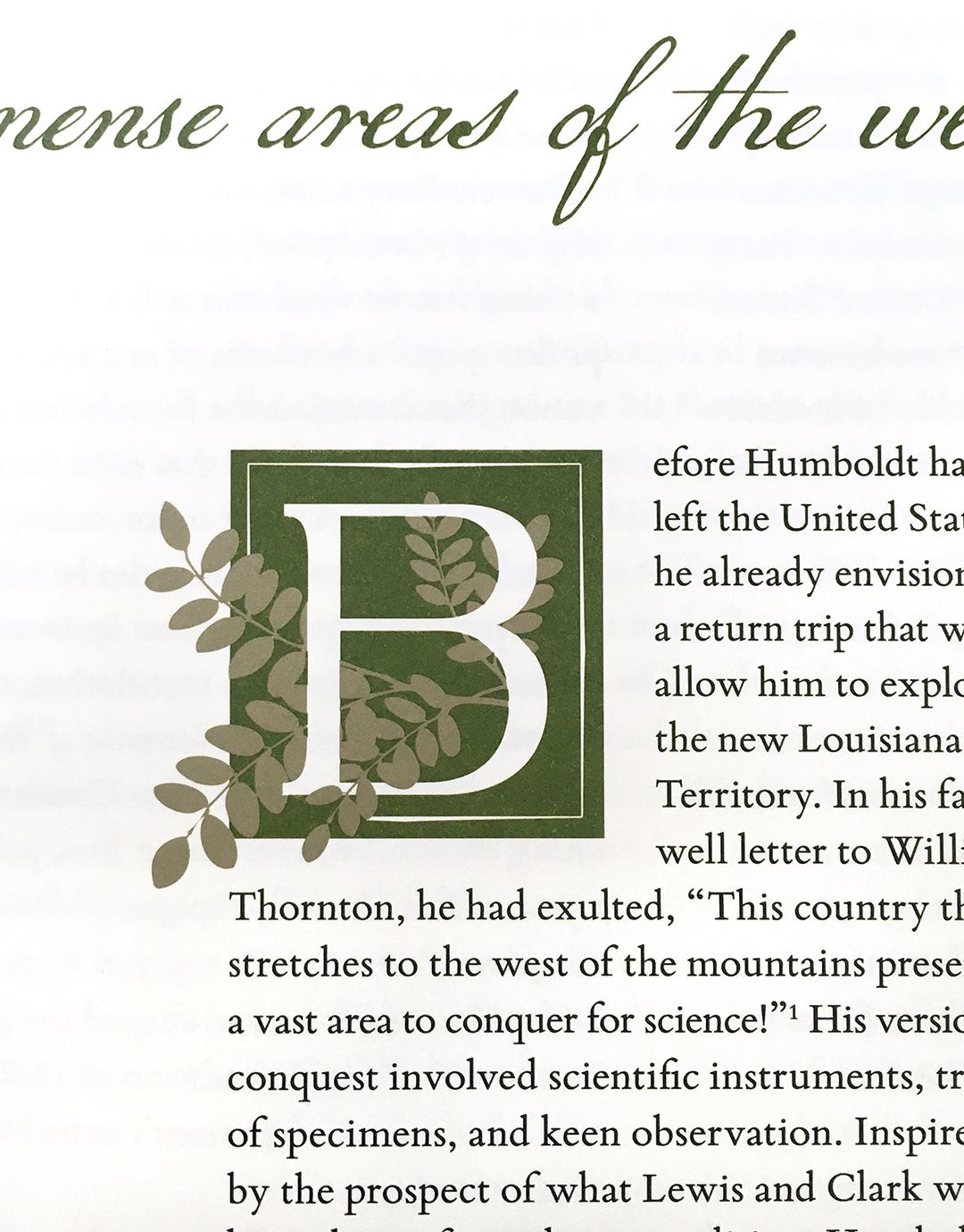 "A picture inside a book with the first letter ""B"" being created from natural elements."