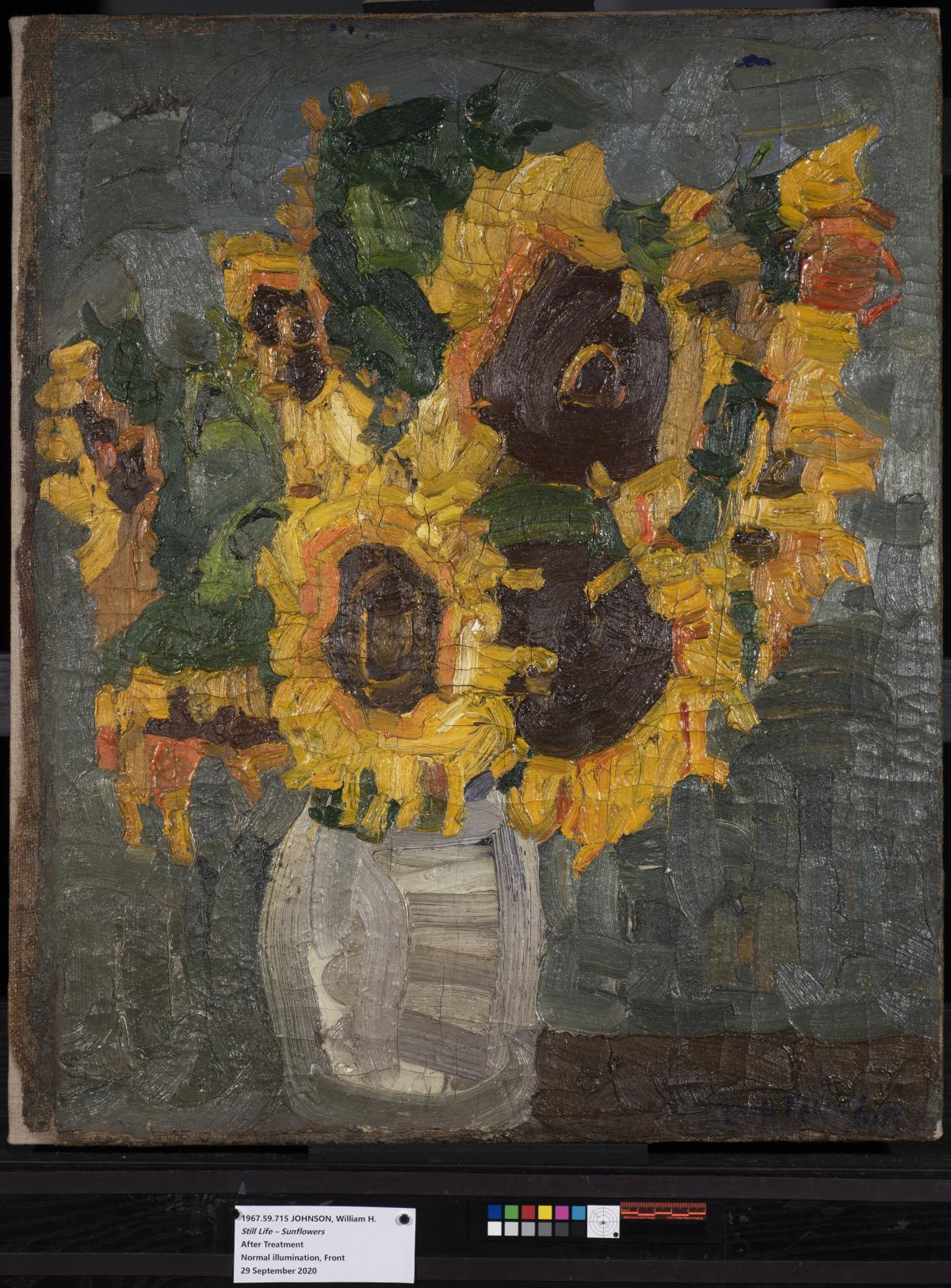 A painting of a vase of yellow sunflowers that has undergone conservation treatment