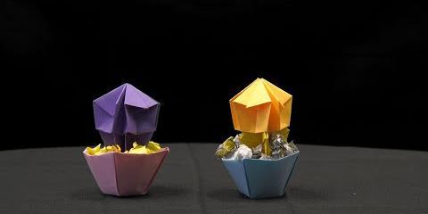 Thumbnail - Handi-hour: Origami Planter