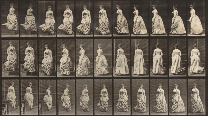 Eadweard Muybridge, Descending Stairs And Turning, From The Book Animal  Locomotion, Ca. 1887, Collotype, Smithsonian American Art Museum, Gift Of  Paul And ...