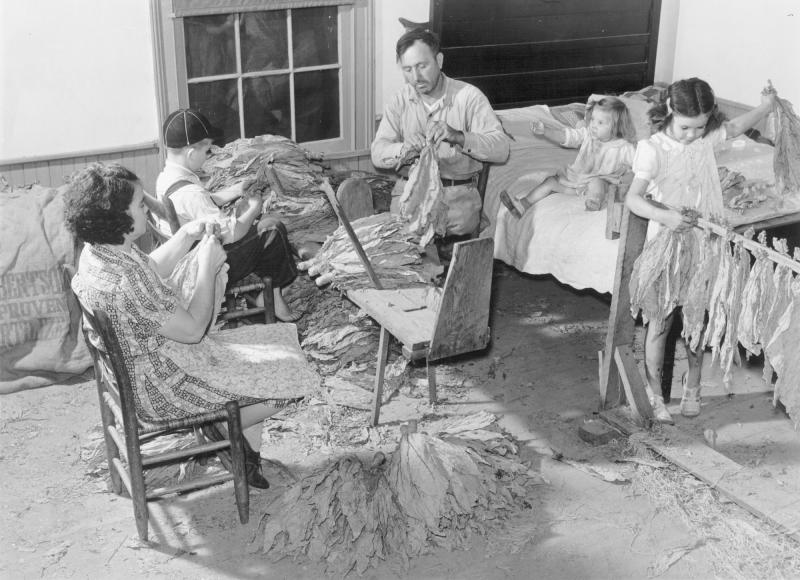 the titus oakley family stripping tying and grading