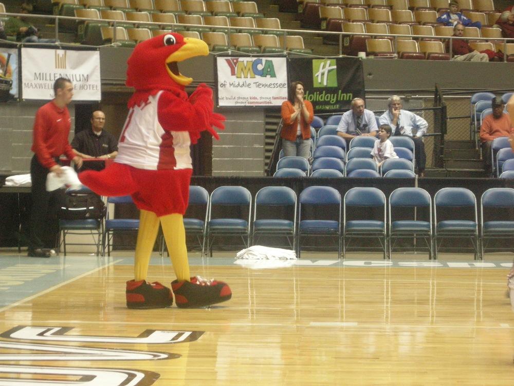 Uk Basketball: Craig's Magical College Basketball Tour: OVC Tournament