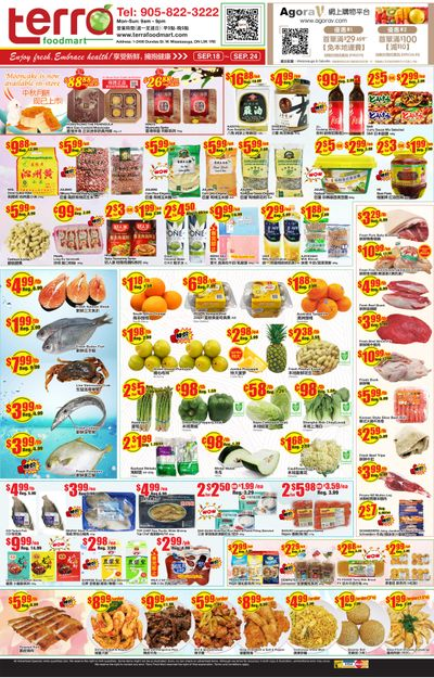 Terra Foodmart