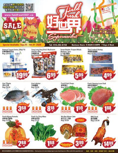 Field Fresh Supermarket