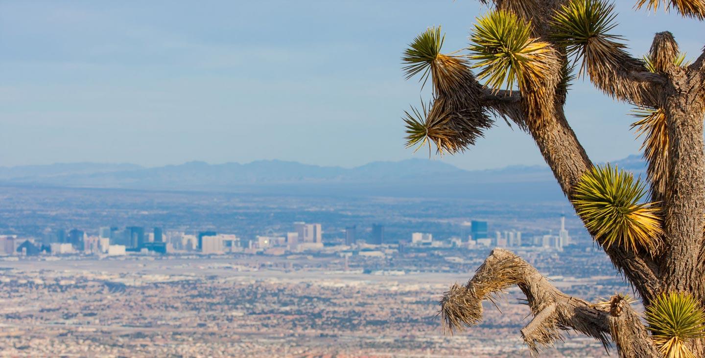 Nevada insurance rates