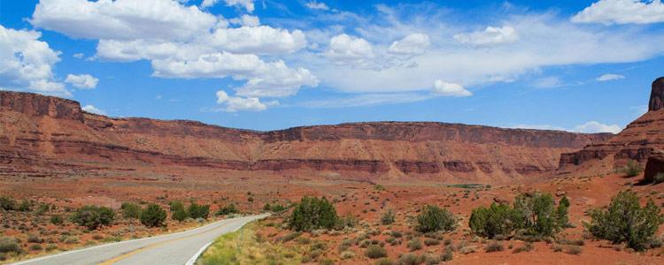 New Mexico Health Insurance