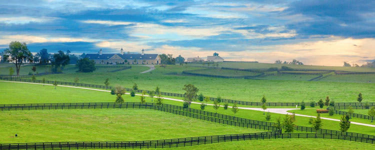 Affordable Car Insurance in Kentucky