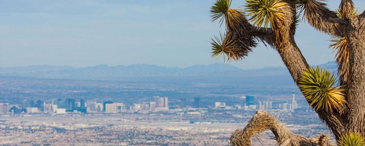 Nevada Homeowners Insurance