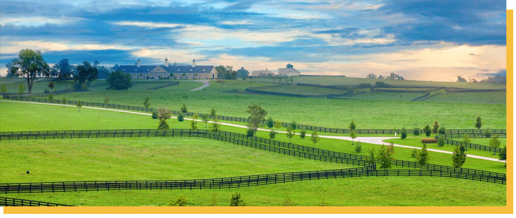 Kentucky Homeowners Insurance