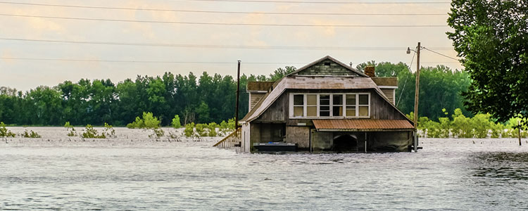 learning different types of natural disasters with homeowners insurance coverage