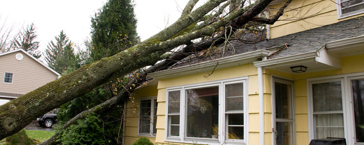 Selling Insurance Before and After a Storm