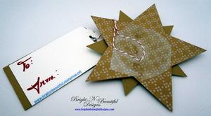 16-gift_tag_star_5