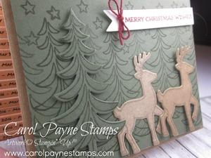 Stampin_up_santa's_sleigh_carolpaynestamps2