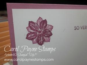 Stampin_up_so_very_much_carolpaynestamps10