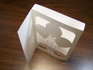 Shadowinstruc3