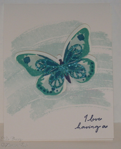 Bold_butterfly_tri_fold_front