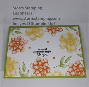 Painted_seasons_daffodil_pumpkin_and_granny