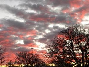 Sunrise_031419
