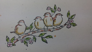 Petal_pink_bird_scratch