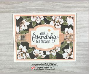 Friendship dsp 1