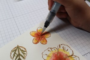 Watercolorexample
