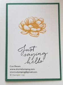 Simple stamping tasteful touches beginner