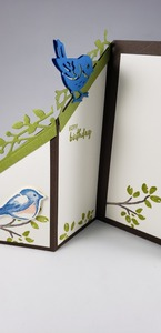 Stampin up birds and branches north star stamper inside