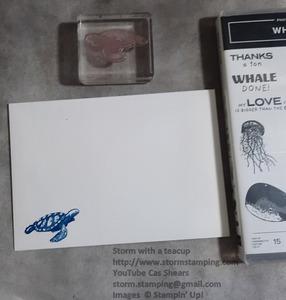 Turtle card env