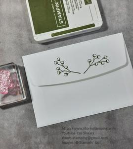 Poinsettia card enc back
