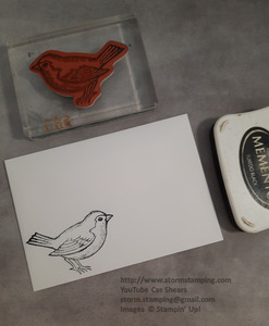 Robin card env