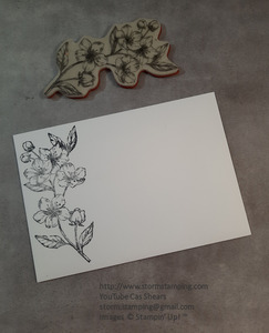 Cherry blossom card env
