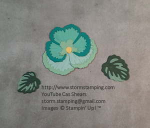 Pansy petals card elements flower