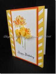 Too kind in daffodil