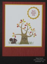 Stampin' up! nuts about you 2