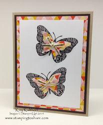 163 well worded butterflies
