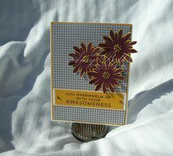 Aug-plxsu-flower-awesome
