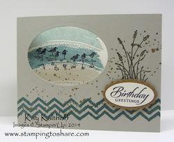 240 wetlands birthday card
