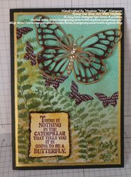 Butterflydiebundle2a