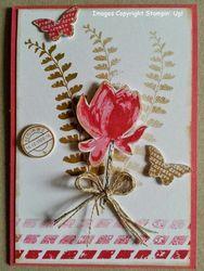 Corina's_lotus_blossom