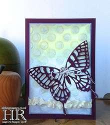 Butterflytexturewtmk