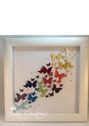 Butterflyshadowbox