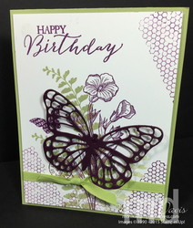 Butterfly-basic