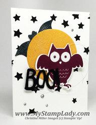 Owl moon 2