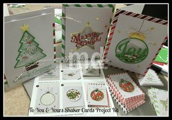 Shaker cards e